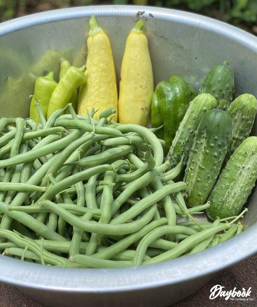 green beans squash and cucumbers in a bowl