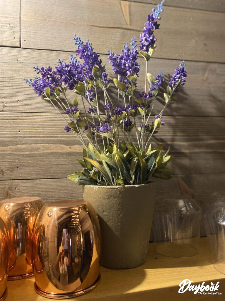 purple flowers in a vase on a desk