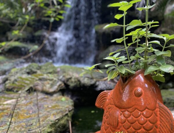 waterfall and orange fish planter in a garden
