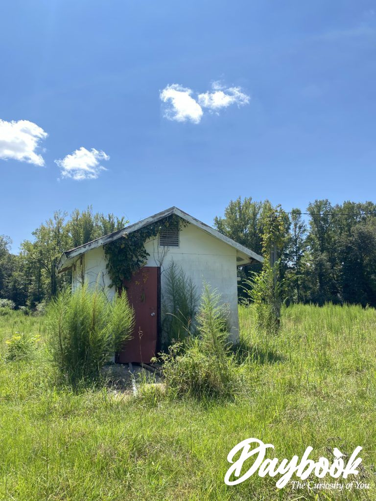 abandoned well house in a pasture