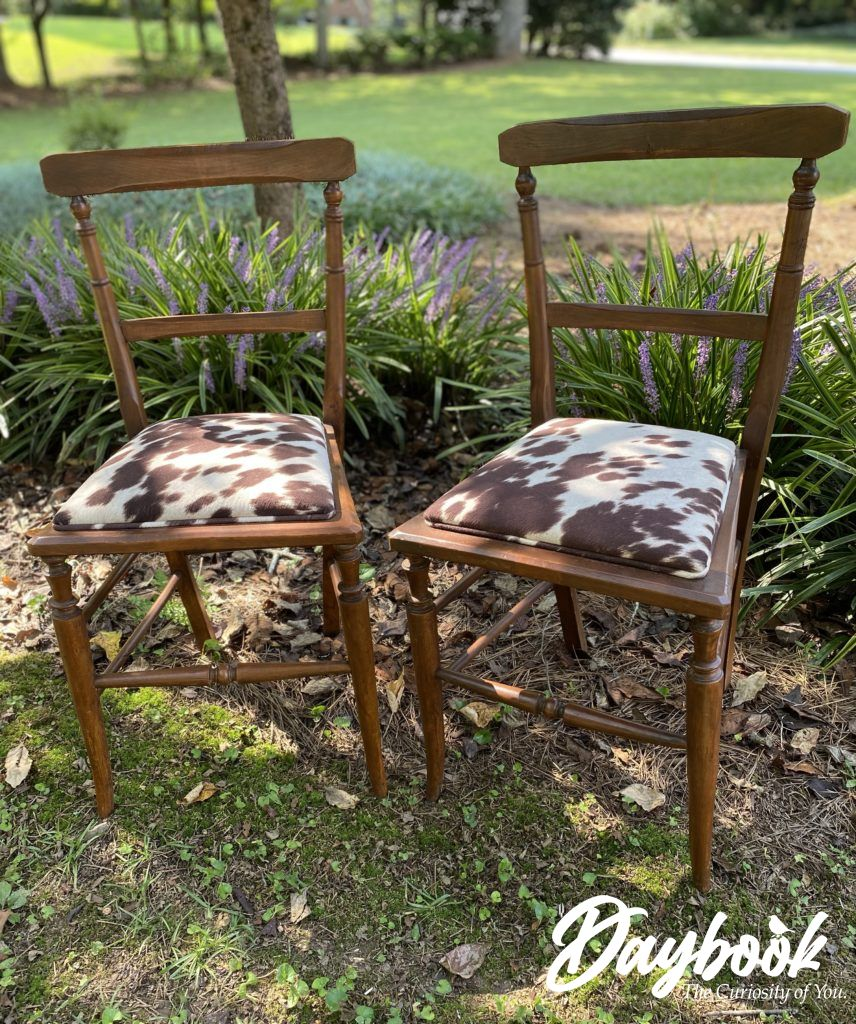 two vintage chairs with cowhide  seats